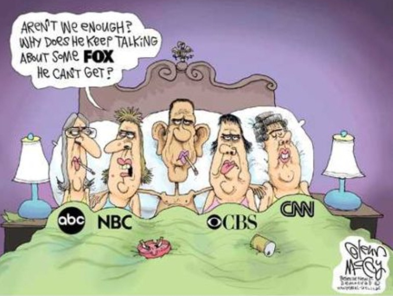 political cartoons that are more informative than the